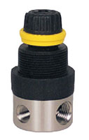 R250SSMINI-G - 5 to 130 Pounds per Square Inch Gauge (psig) Pressure Regulator and Gauge